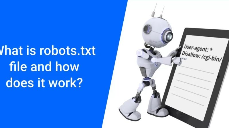what is robots txt